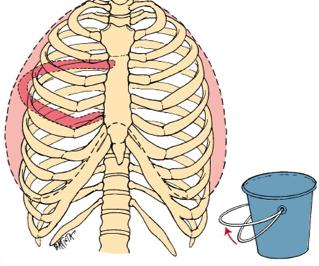 bucket handle R
